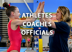 Culture of the Games Athletes Coaches Officials